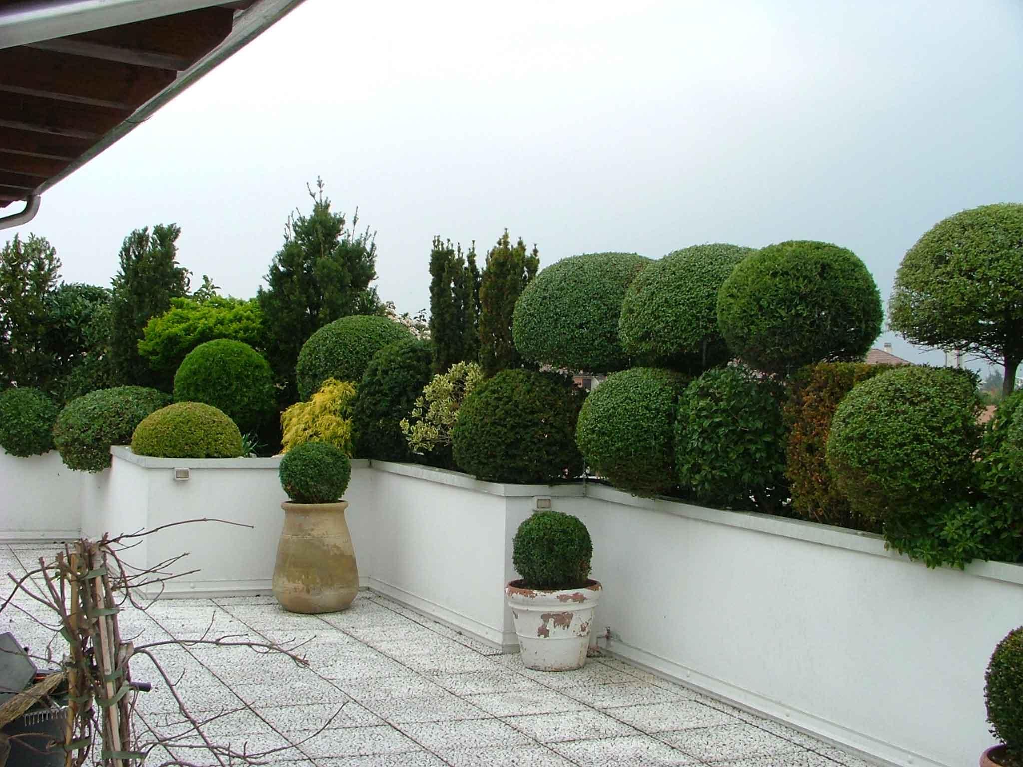 Terrazze e pareti verdi: Oltre il Verde Giardini | Piove di sacco ...