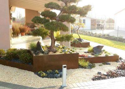 albero-esterno-in-recipiente-in-corten